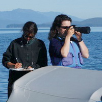 Researchers photographing humpback whale flukes